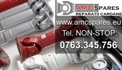 Reparatie Cardan RENAULT MASCO