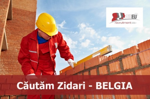 Zidari   Belgia
